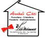 www.annibali-chiti.it